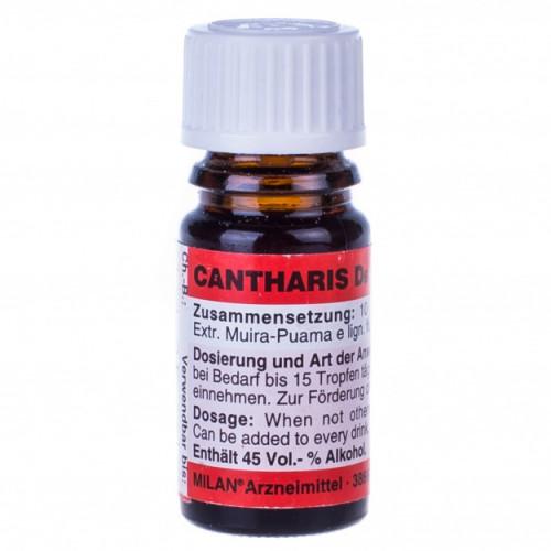 Cantharis D6